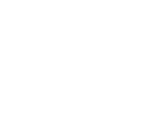 LAKE Solutions AG - we serve IT better
